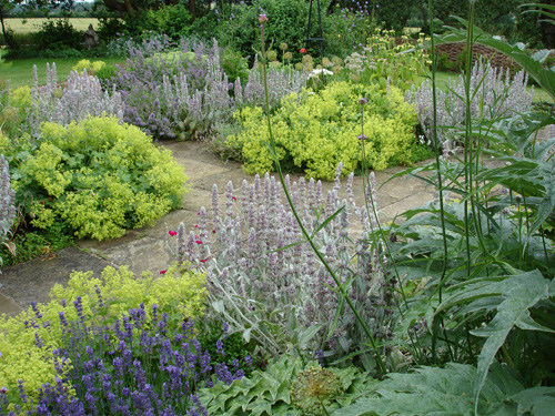 Garden Design Garden Design with dr dans garden tips the charm of